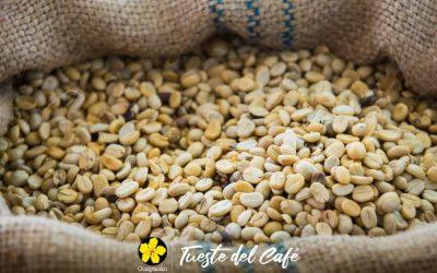 CURSOS PROFESIONALES: Tueste profesional de café