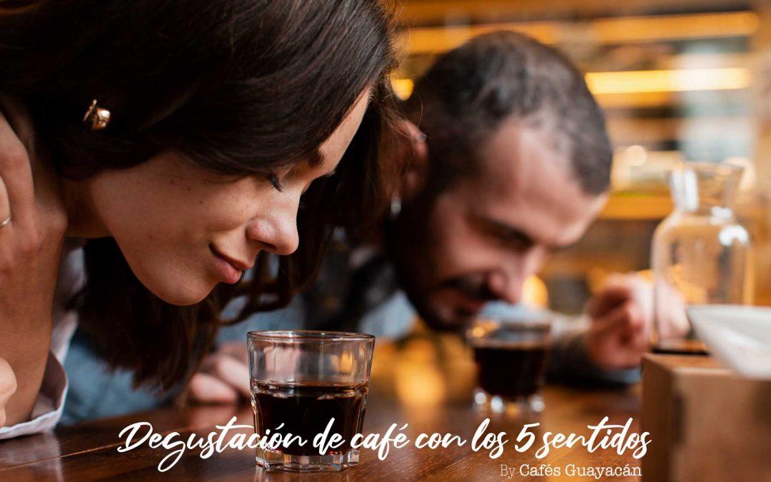 EXPERIENCIAS DE CAFÉ: Degustación de café con los cinco sentidos
