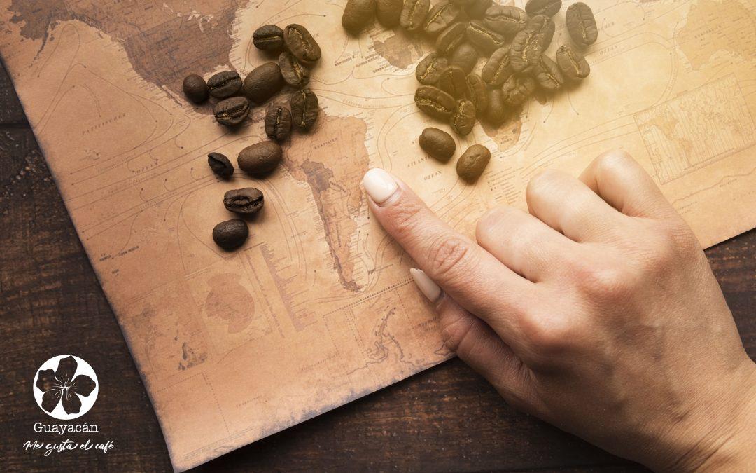 La llegada del cultivo de café a América
