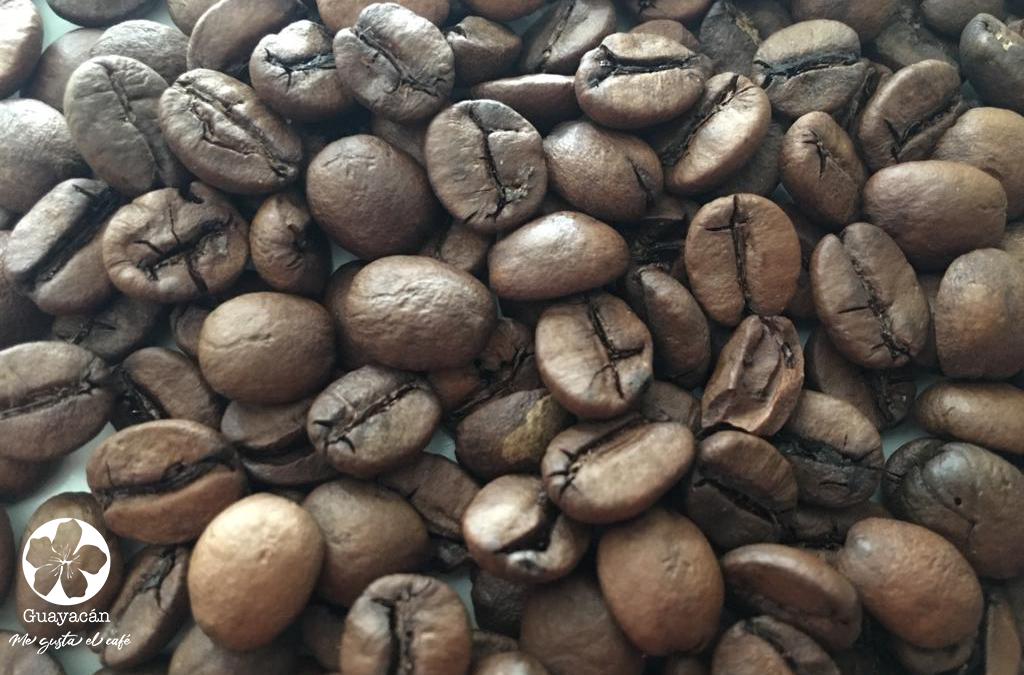 ¿Cómo elaborar el café campesino?