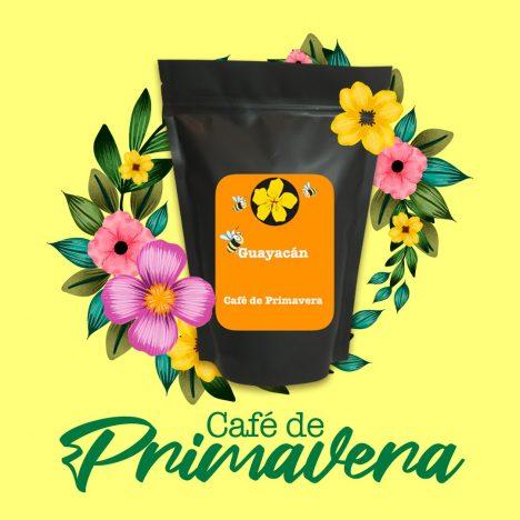cafe primavera - cafés de especialidad